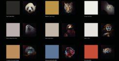 Новая серия красок Tikkurila Endangered Colours